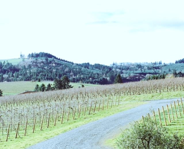 portland-wine-country
